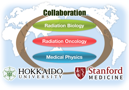 Radiation Biology/Radiation Oncology/Medical Physics